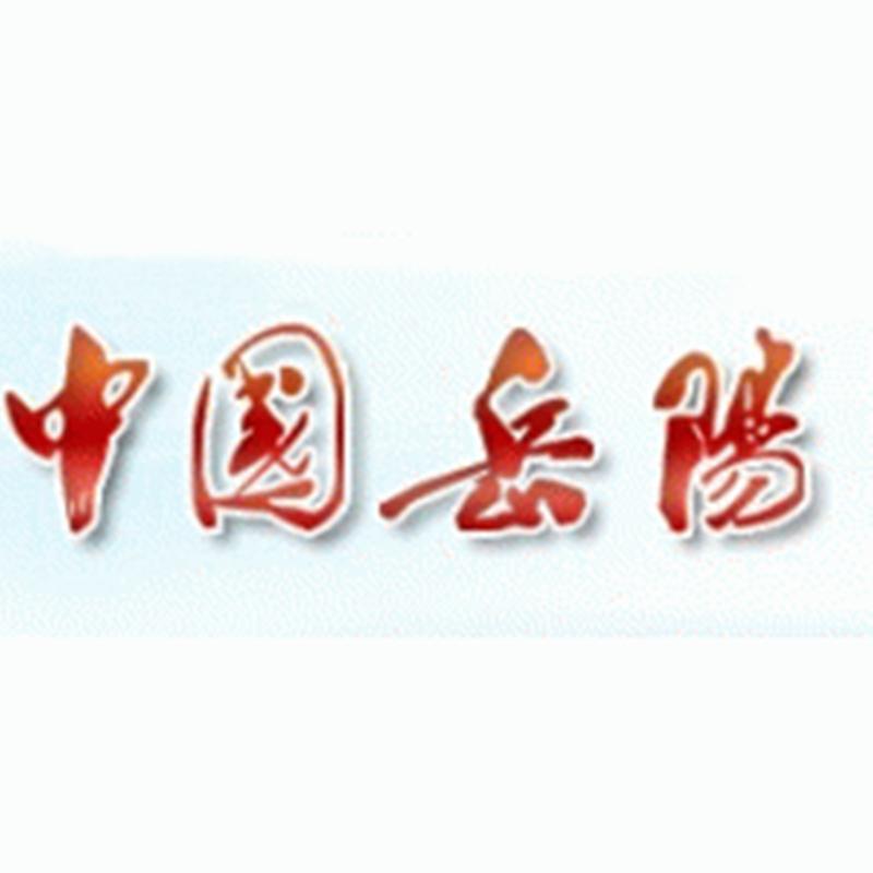 Meloarte品牌助力岳阳市公众服务中心项目
